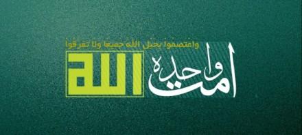 تشکیل امت واحده اسلامی از مهمترین دلیل حضور امام رضا(ع) در خراسان