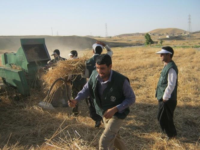 100 هزار نفر روز،فعالیت بسیجیان در اردوهای جهادی/ بیابان زدایی 300 هکتار توسط جهادگران بسیجی