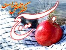 بسیج مکتبی برای تفکر و خدمت به ایران و اسلام است