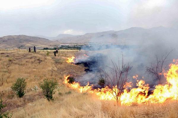۱۲ مورد آتش سوزی عمدی در قزوین شناسایی شد/۵۷۰ هکتار از اراضی «لات» طعمه حریق شد